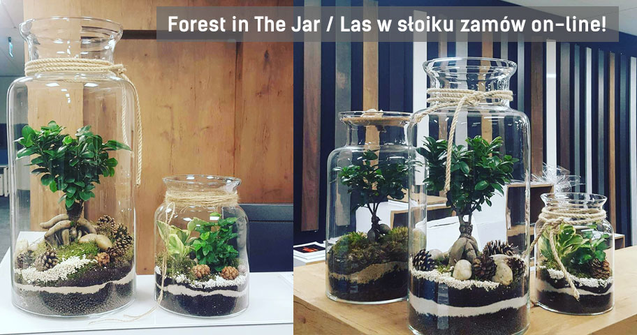 forest-in-the-jar-wroclaw
