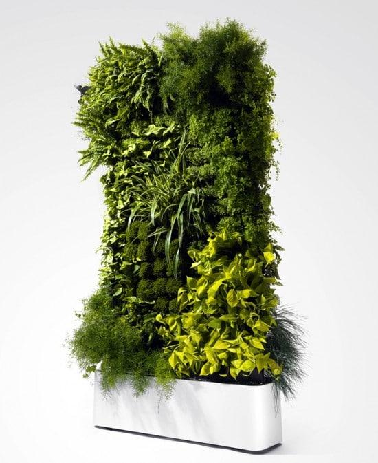 zielone sciany katowice